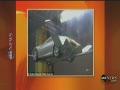 New Flying Car- Autovolanto