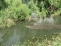 Underwater Hummer Ride