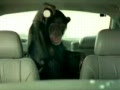 Trunk Monkey Thief